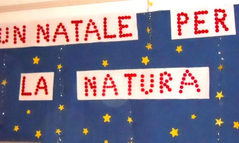 39 un natale per la natura 39 la bella iniziativa alla scuola for Cartelloni di natale per la scuola dell infanzia