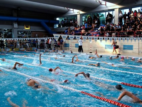 Piscina e polemiche la denuncia della san francesco nuoto 39 cacciati dopo 30 anni di attivit - Piscina comunale arese ...