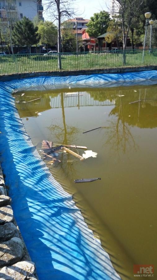 Animali morti e sporcizia se questo un laghetto in for Animali per laghetto